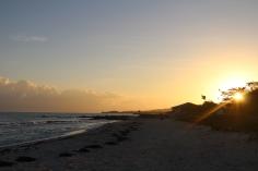 Beach Sunrise Flag